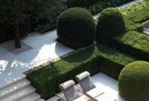 Garden - DR - Chepstow / by Philip