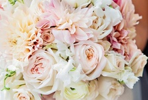 Bouquets and Boutonnieres / by Margo Norman
