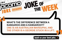 Jacamo's Joke of the Week / by Jacamo UK