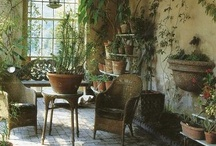 Indoor Planting / by Scott Weaver