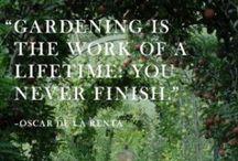 Garden Wisdom / by Scott Weaver