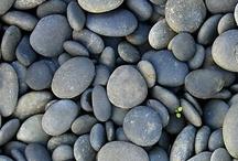 Rocks / by Jan Erickson