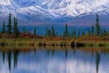 Alaska / by Terry Falvey