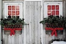 Christmas / by Cathy Murawski