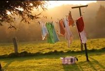 Laundry / by Cheryl Hughes