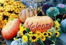 It's Fall Y'all / by Meghann Gaunt Chesnut