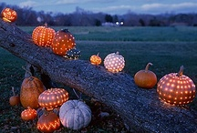 Fall/Halloween / by Mandy S.