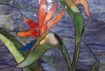 Stained glass / by Vicki Vandenberg
