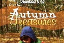 Autumn Treasures / by Amanda Bennett Unit Studies