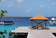 Bonaire + Captain Don's Habitat  / by MaduroDive