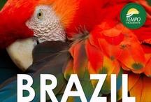 Taste of Brazil / by Tempo Holidays