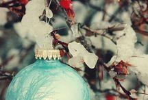 Tis the Season! / by Trish Price
