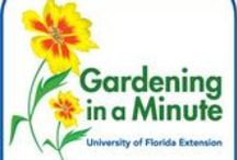Podcasts About Gardening (Info, Tips, DIY) / Lots of great shows about gardening from across the U.S and a couple I found to be of interest from Great Britain. Many of these podcasts are radio programs that air weekly and many of the hosts have frequently updated blogs and websites with loads of great gardening tips.   / by Bernadette Fox