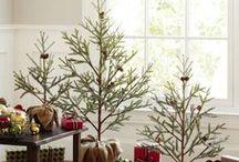 Charlie Brown Christmas Trees / by Bernadette Fox