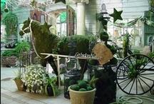 Garden Center Ideas / by Lidia Herrera Rivera
