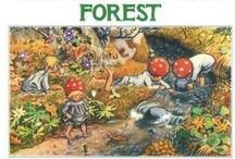 Waldorf Children's Books / by Bella Luna Toys