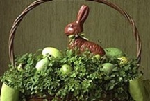 Easter Basket / by Pamela Neill