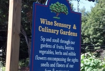 Sensory Garden / by Nashoba Winery