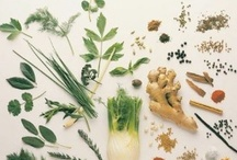 *{prepping}* home remedies / by Jo Wilson