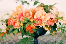 florals. / by Nicole Huntsman