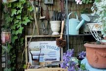 Garden House / by Linda Rahman