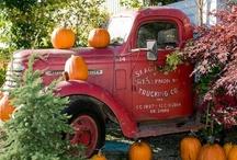Fall/Halloween / by Brenda Hall