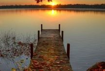 Beautiful World / by Brenda Hall