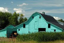 Barns / by Julie Lane