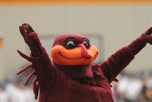 All Things Hokie / by Michelle Slate