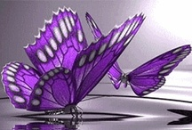Butterflies / All things #butterflies: art, jewelry, nails, nature, signs, clothes, pictures. I believe the #butterfly is truly beautiful! / by Adele Maxwell