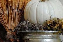 Autumn Table & Centerpieces / by Teresa Clark