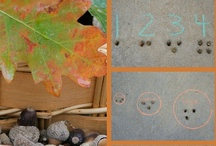 Squirrel and Nut Activities / by Deb @ Living Montessori Now