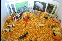 Farm Unit Study / by Deb @ Living Montessori Now