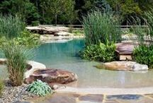 """Water Feature Inspirations / Out of all the elements, water is the most popular in garden design. Water can be used to please almost every sense; soothing sight, calm sound, and cooling feel. Take a look at all the beautiful things you can do with water. To see some of the things we've done, take a look at any album labeled """"SL"""". Also, take a look at our website to see all the services we do: http://scarlettslandscaping.com/ / by Scarlett's Landscape, Inc."""