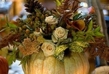 Fall/Thanksgiving / Holidays, food, decor and more / by Janie Wise-Wilson