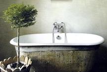 the bath / by Mackenzie Frankenberg