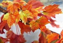Leaves - Watercolors and Photos / by Catherine Wadhams