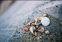 life's a beach / by Sarah Prall
