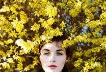 yellow / by Sarah Prall