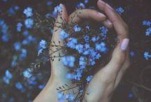 Beautiful things / by Liz Voss