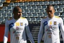 Noticias - Tigres UANL / by SoyTigre.mx