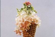 flower power / by satsuki shibuya