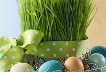 Spring & Easter Ideas / by Sharon Rowley- Momof6