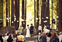 WEDDING / by Mary Schneider