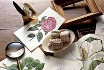 Antique / by Le Monde Workshop