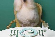at table with taste! / by Maria Gabriella Borrelli