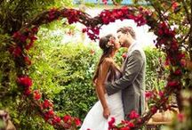 Wedding Photography / by St. Louis Perfect Wedding Guide