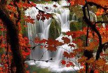 Beautiful Autumn / by mªdcªtj0 2.0