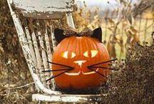 Halloween / by Monica Maniatakos