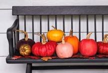 halloweeny. / Halloween diy projects and decor / by cheryl @ a pretty cool life.